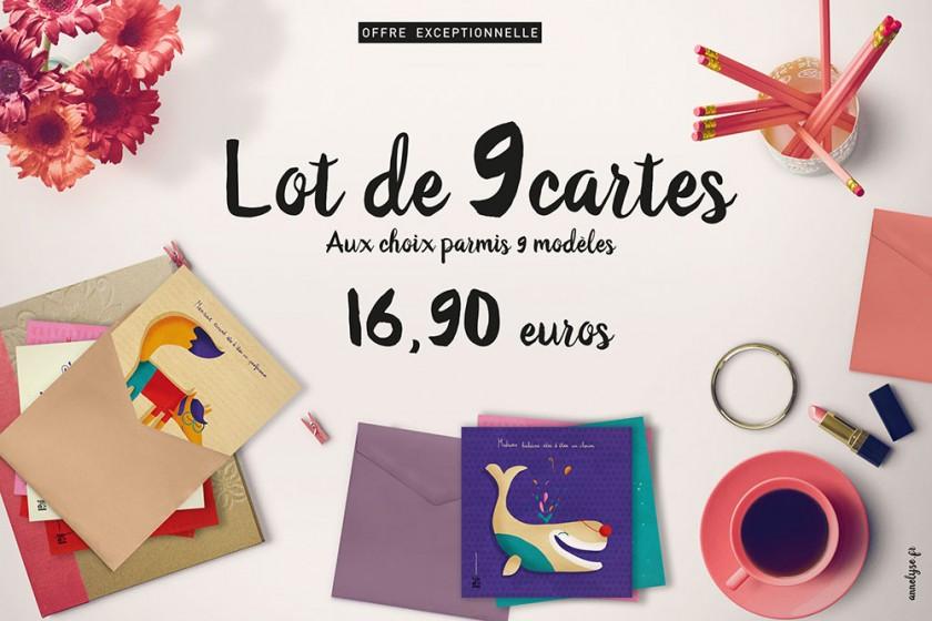 offre Lot de 9 cartes pour 16,90 au lieu de 18 euros